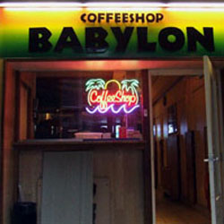 Coffeeshop Babylon in Amsterdam, the Netherlands