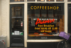 Coffeeshop Picasso in Amsterdam