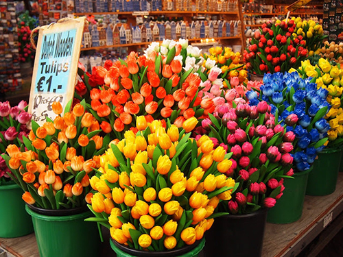 Dutch Wooden Tulips for sale on the Flower market in Amsterdam