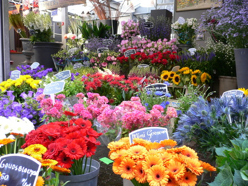Beautiful colorful flowers on the Flower market