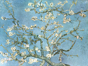 Almond Blossom from Vincent van Gogh